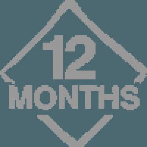 12 months icon 300x300